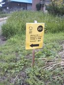 Kiriyama2