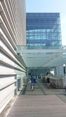 Shinmuse5
